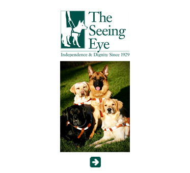 Abled Public Service Ad for The Seeing Eye Guide Dog Training School in Morristown New Jersey showing a german Shephard sitting in the sun on a green lawn with a black lab, a golden lab and a golden retriever with the caption 'Independence and Dignity Since 1929. Click here to visit their website.