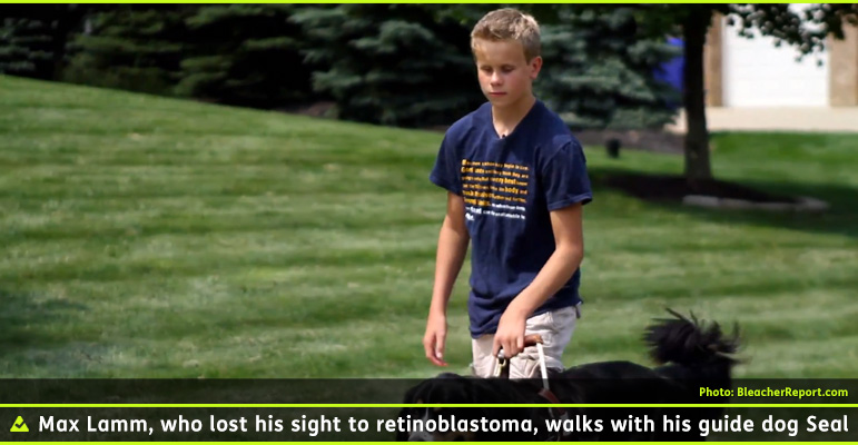 AbledTeens Photo shows 13 year old Max Lamm walking with his guide dog Seal. Max lost his vision as an infant to Retinoblastoma - cancerous tumors in his eyes. Max has sandy blonde hair cut neatly and is wearing a blue t-shirt with khaki shorts. We can see his hand on Seal's harness handle but the aspect ratio of the photo doesn't let us see Seal except for the top edge of him. He looks like he might be a collie-labrador mix. Seal is black with tan spots above his eyes, a white streak from between his eyes to around his nose flanked by black and then tan coloring around his mouth. There is a nicely mowed lawn and trees in the background in Max's home-town of Mars, Pennsylvania.