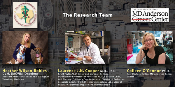 A graphic imiage shows the research team at the University of Texas' MD Anderson Cancer Center and Texas A&M College of Veterinary Medicine and Biomedical Sciences