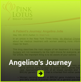 Click here to link to Angelina's treatment journal at the Pink Lotus Breast Center