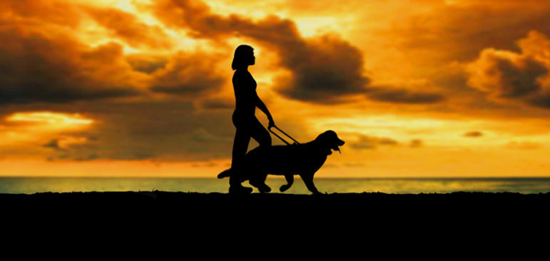 Laura Meddens and her faithful guide dog Wagner are shown in silhouette walking against a brilliant orange sunset on the sea on the Caribbean island of Curaçao.