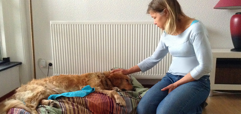Laura Meddens bids a sad farewell to her guide dog Waggie