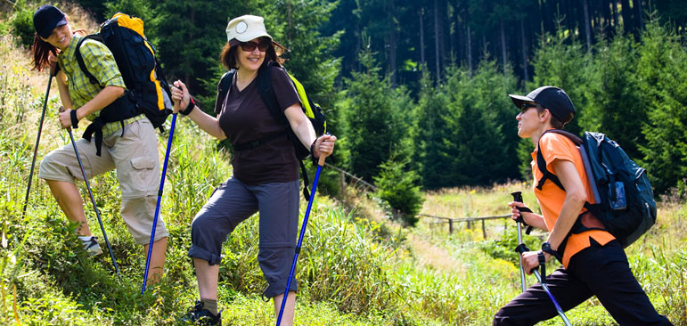 Photo shows three people hikinh in a hillside using walking polls with dark-green fir trees in the background.