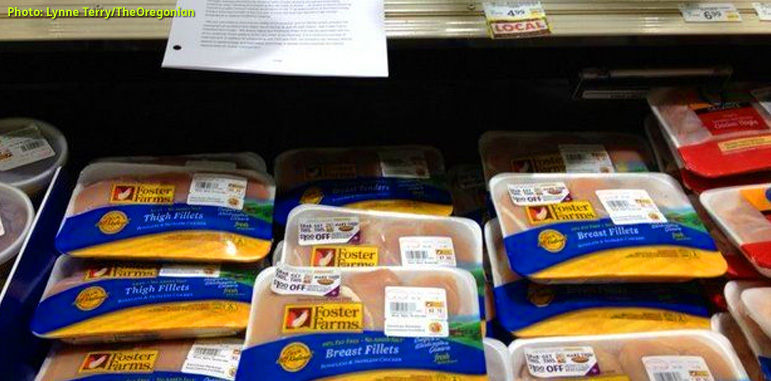 Photo shows packages of Foster Farms chicken in a refrigerated display cooler in an Oregon grocery store with sheets of paper detailing safe handling instructions lying on the edge of the display. Photo credit: Lynne Terry - The Oregonian