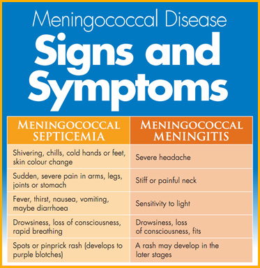 AbledFacts box is titled Meningococcal Disease Signs and symptoms in white text over a blue background. There are two columns. The left is titled Meningococcal Septicemia and lists the following signs and symptoms: Shivering, chills, cold hands or feet; skin color change; Sudden, severe pain in arms, legs, joints or stomach; Fever, thirst, nausea, vomiting, maybe diarrhea; Drowsiness, loss of consciousness, rapid breathing; Spots or pinprick rash (develops to purple blotches). The second column reads: Meningococcal Meningitis and lists the following signs and symptoms: Severe headache; Stiff or painful neck; Sensitivity to light; Drowsiness, loss of consciousness, fits; A rash may develop in the later stages.