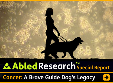 Special-Report-AbledResearch Headline link banner shows a silhouette of Abled.com Co-Founder Laura Meddens walking with her Seeing Eye guide dog Wagner against a backdrop of Waggie's T-Cells as seen under a microscope with the headline: Cancer A Brave Guide Dog's Legacy. Click here to go to the article.