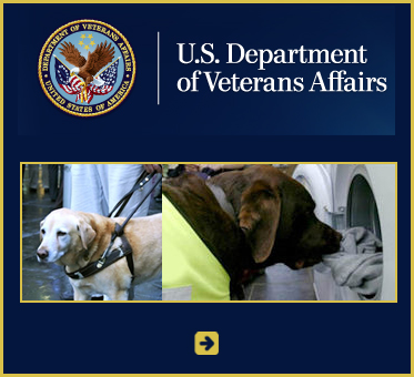 Abled Public Service Ad - US Department of Veterans Affairs -Veterans-Health-Administration Guide and Service Dogs shows a photo of a guide dog in a harness and a service dog unloading clothing from a dryer.
