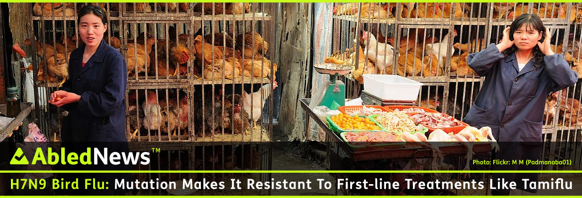AbledNews post banner with the headline: H7N9 Bird flu: Mutation makes it resistant to first-line treatments like Tamiflu. A photograph by flickr user M M (Padmanaba01) shows to women working in a stall at a chicken market in Xining, Qingai province China. There are cages of brownish-red hens and white roosters all crowded together and a table laid out with processed chicken meat in unsanitary conditions.