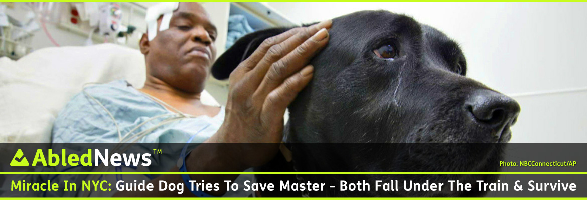 AbledNews Post Banner shows 60 year old Cecil WIlliams, a blind African American man lying on a gurney in a hospital emergency room with the top of his head banadaged and stroking his black labrador guide dog Orlando on the side of his head. The headline reads: Miracle In NYC: Guide Dog Tries To Save Master - Both Fall Under Train And Survive.