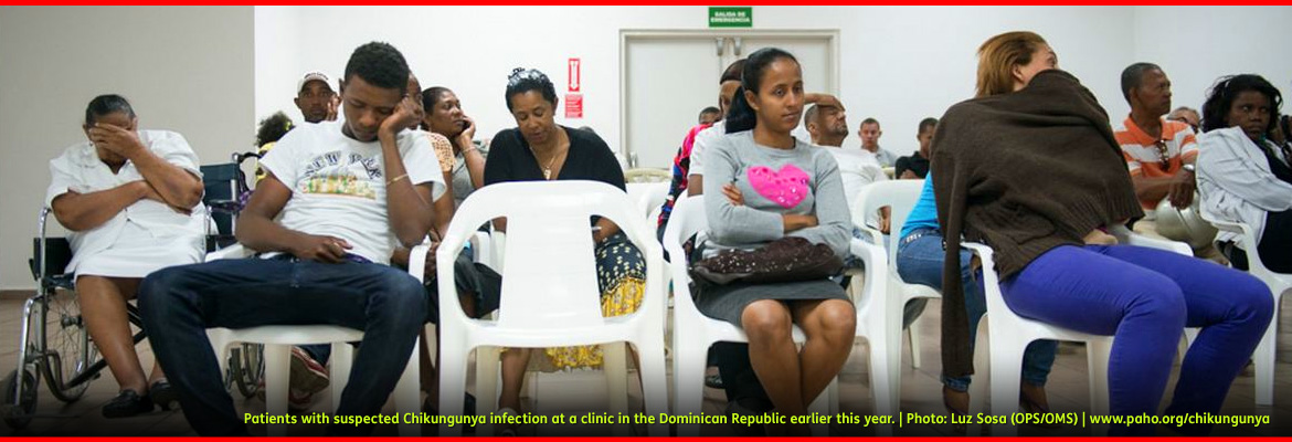 Photo from the Pan American Health Organization shows patients with suspected Chikungunya infection at a clinic in the Dominican Republic earlier this year. A woman in a wheelchair holds her face in her hands; a young man in the front row of white plastic chairs leans his head against his fist, while an older man in the middle of the third row leans back and holds the palm of his right hand to his forehead in obvious discomfort; a woman in the front row covers herself in a sweater and in later photos is seen collapsing in pain into a wheelchair.
