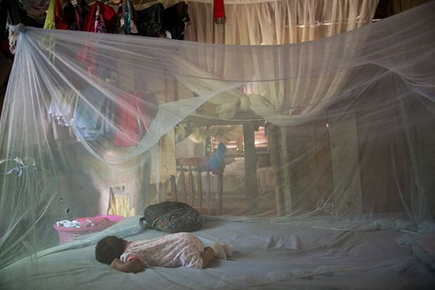 Photo by Luz Sosa shows a baby sleeping on a bed protected by a hanging tent of mosquito netting in the Dominican Republic.