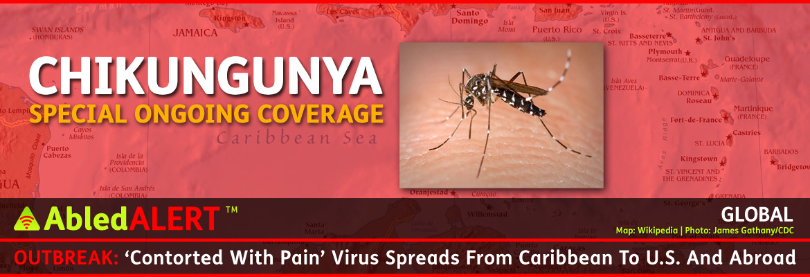 AbledAlert Post Banner shows a photo of a white striped Asian Tiger Mosquito biting human skin set against a red transparent layer covering a map of the Caribbean region. The text over this background reads: Chikungunya, Special Ongoing Coverage. The Post headline reads AbledAlert: Outbreak: 'Contorted With Pain' Virus Spreads From Caribbean To U.S. And Abroad.