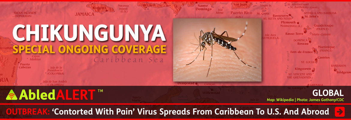 AbledAlert Page Link Banner shows a photo of a white striped Asian Tiger Mosquito biting human skin set against a red transparent layer covering a map of the Caribbean region. The text over this background reads: Chikungunya, Special Ongoing Coverage. The Post headline reads AbledAlert: Outbreak: 'Contorted With Pain' Virus Spreads From Caribbean To U.S. And Abroad. Click here to go to our ongoing coverage page.