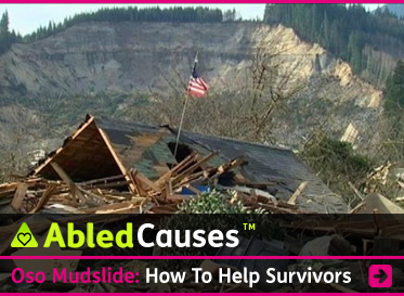 AbledCauses Post link headline box shows an American flag flying on a post sticking out of the collapsed roof of a home that was crushed and carried away by a massive landslide in Oso, Washington. The bare mud cliff created by the slide is seen in the distance. The headline reads: AbledCauses: The Oso Mudslide: How to Help Survivors of the Washington State Mudslide Disaster. Click here to go to the post.