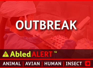 AbledAlert: Outbreak linkbox. Click here to go to the AbledAlert Outbreak Main page.