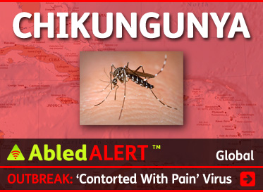 AbledAlert link box shows a photograph of an Asian Tiger Mosquito set against a transparent red layer covering a map of the Caribbean region with the word Chikungunya in WHite at the top. The headline reads: Outbreak: 'Contorted With Pain Virus. CLick here to go to our special ongoing coverage.