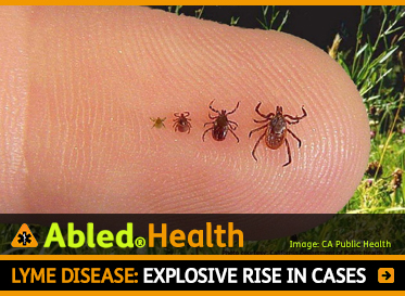 AbledHealth: Lyme Disease: Explosive rise in cases. Image: Photo of ticks on a forefinger near the ground show stages of growth.