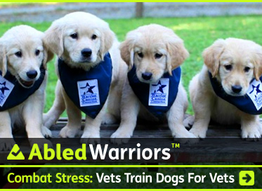 AbledWarriors-Combat-Stress-Warrior-Canine-Connection-373x273